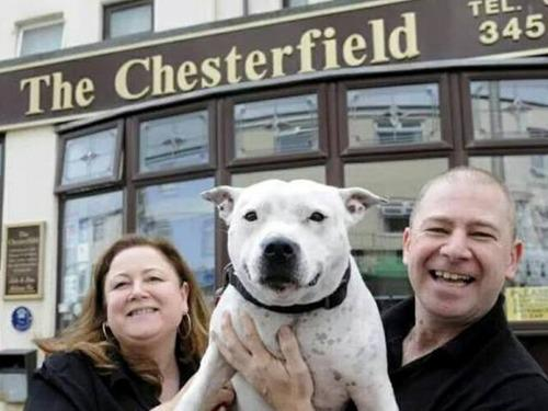 Julie and Steve with Barney.T.Rubble at The Chesterfield Pet Friendly Hotel Blackpool