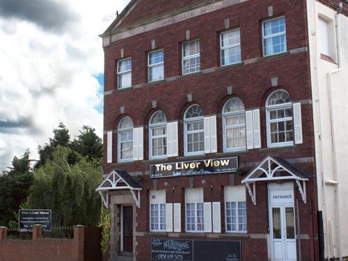 The Liver View