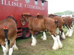 Wigtown Show -  First Wednesday in August annually