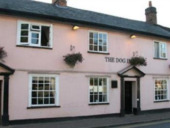 The Dog Inn -