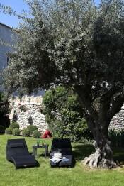 Relax à l'ombre des oliviers