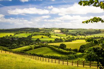 Heavenly Devon!