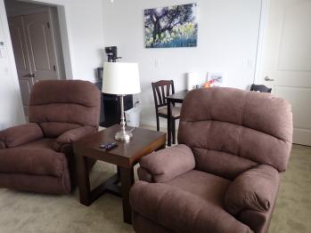 Suite 202 Living Room