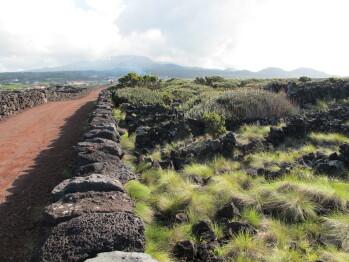 Areias da Prainha. Paisagem Pico 1