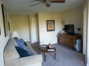 Living room of the Suite. NO PETS IN THIS ROOM.Pullout couch(queen size bed).