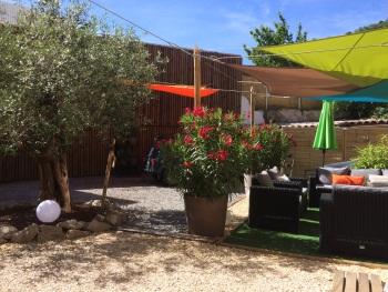 Salon d'été  et olivier centenaire