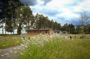 Lodge in Meadow