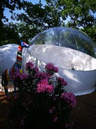 Gardienne de la bulle