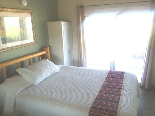 Standard 1 Bed Micro-Queen-Standard-Ensuite with Shower-Mountain View