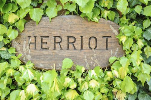 Herriot Cottage - SELF CATERING