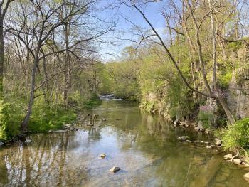 Nearby Mill Creek in spring