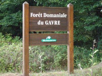 """"""" Le Poumon vert """"  de la Loire Atlantique ."""