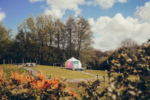 Glamping Experience With Prosecco