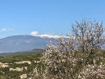 Mont Ventoux depuis Venasque