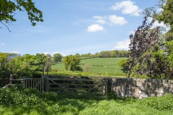 Beautiful local countryside
