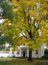 Fall at the VanCleef Homestead