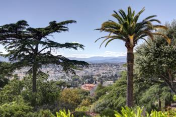 Jardin vue Super Cannes