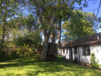Alnmouth Cottages - Midwood Lodge and Cottage garden with tree house and parking