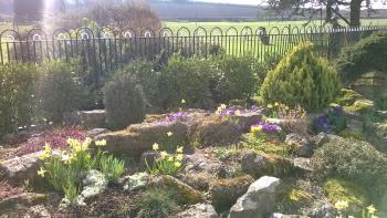The rockery in the garden