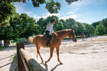 Cours d'équitation individuel