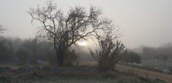 Lever de soleil à travers la brume matinale