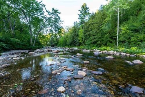 River in Back Yard