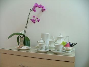 Tea Tray B&B