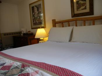 Room 11 - Pet-friendly-Queen-Private Bathroom-Superior - Base Rate