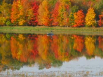 Fall Fishing on the Lake
