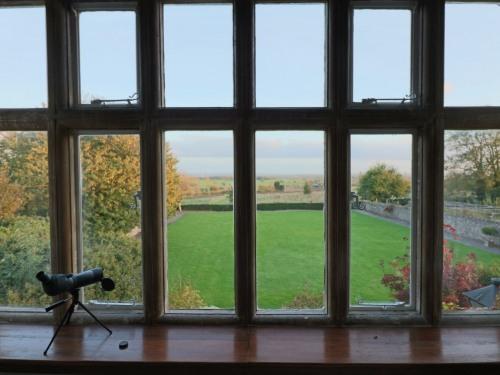 View from Alveston Room 7