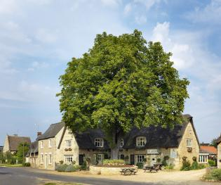 The Crown Inn - Set in a rural village just outside Peterborough
