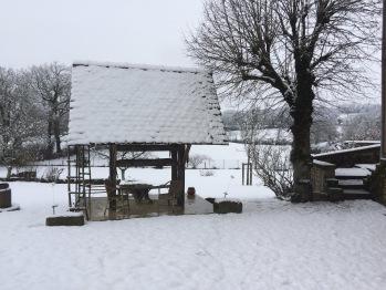 """le """"coungrel"""" en hiver"""