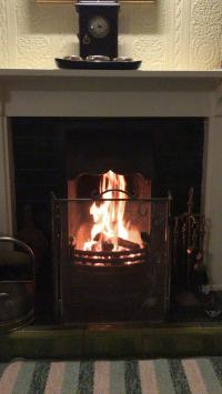 Guest lounge - coal fire - picture 2