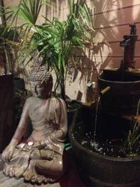 fontaine a poisson