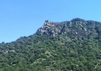 Called Eagles Peak, also seen from the front yard.