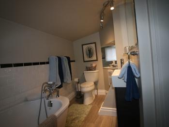 Parisienne Bathroom
