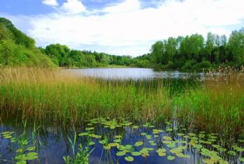 Lake at Hilton Park