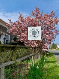 Black Walnut Bed and Breakfast - New sign and logo!
