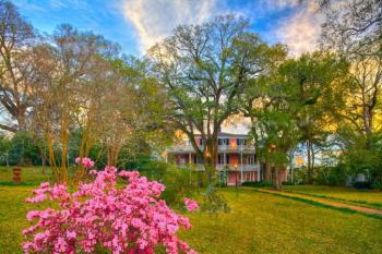 The Elms Natchez