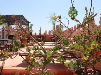 Dar Andamaure - La Terrasse
