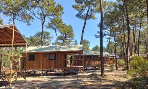 Ecolodge 4/7P - Cabane sur pilotis - Salle de bain