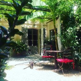 Minette in the garden