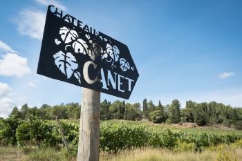 Château Canet Vineyard Walk