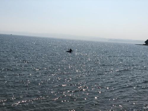 Torquay sea Body paddling