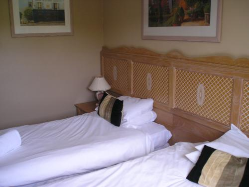 Twin room-Club-Ensuite with Shower-Countryside view - Base Rate