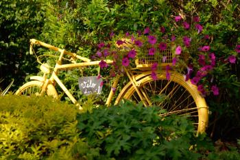 Le Jardin du Nid d'Omer