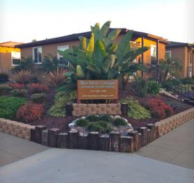 Welcome- BHC Pet Friendly Vacation Rentals