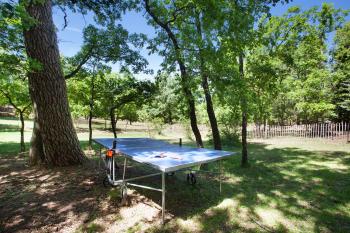 La table de ping-pong sous les arbres