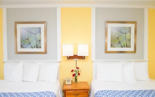 Quad room-Ensuite-Superior-Two Queen Room