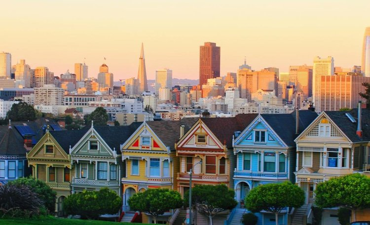 Alamo Square & the Painted Ladies